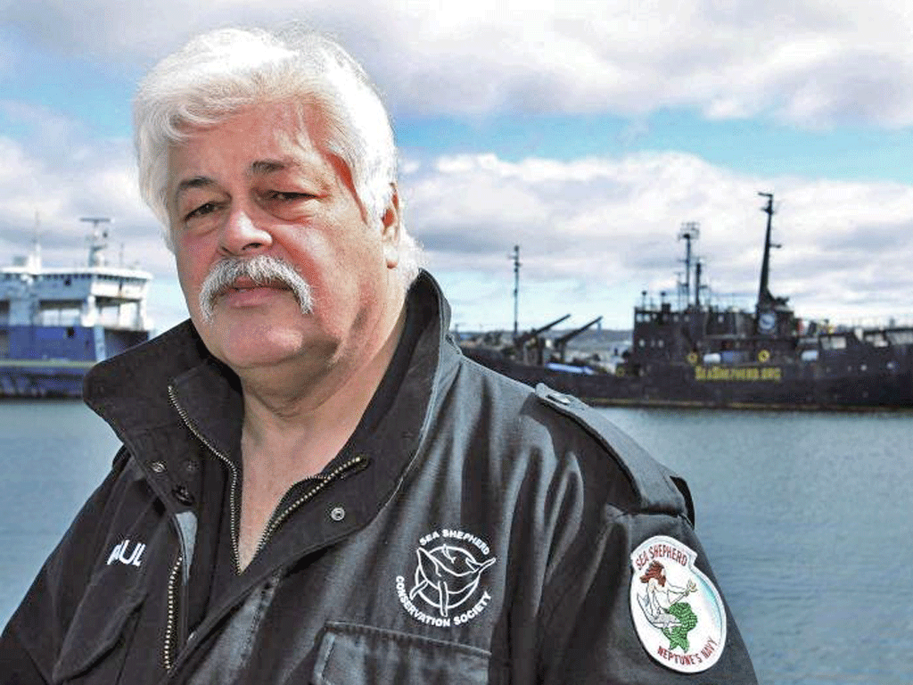 Paul Watson is accused of using his ship to hit an illegal shark fishing vessel